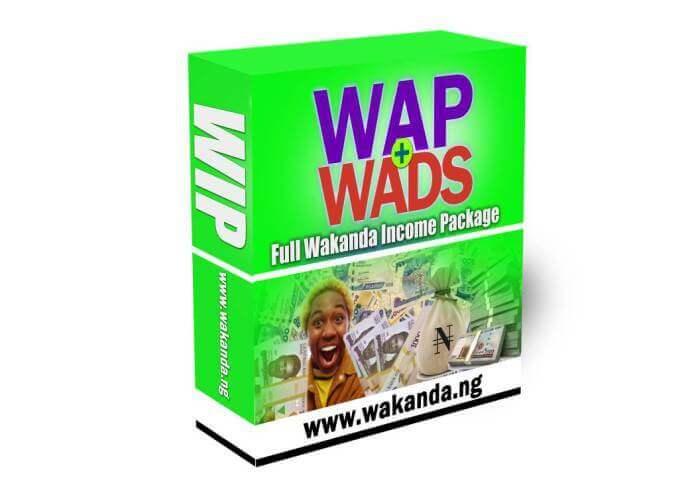 wakanda-nation-income-progam-review(1)